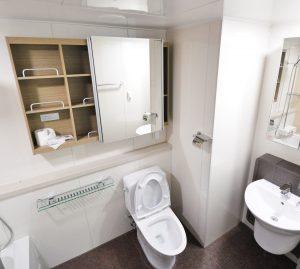 Een toilet kiezen