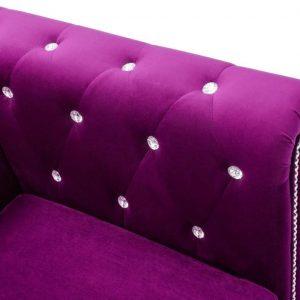 Bankstel Chesterfield-stijl fluwelen bekleding paars 2-delig (incl. vloerviltjes)